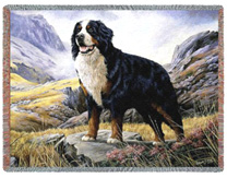 Bernese Mountain Dog Throw - Bernese Mountain Dog Afghan
