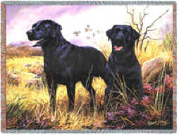 Black Labrador Retriever Throw - Black Labrador Retriever Afghan (2)