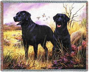 This elegant and colorful Black Lab Throw by Robert May makes a perfect Black Labrador Retriever gift!