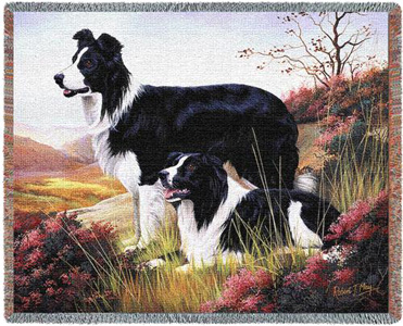 A Beautiful Border Collie Tapestry Throw or afghan Makes the Perfect Dog Lover Gift!