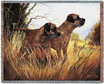 Border Terrier Throw - Border Terrier Afghan