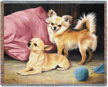 A Beautiful Chihuahua Tapestry Throw or afghan Makes the Perfect Dog Lover Gift!